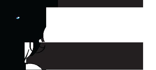 Naisellinen.fi – Waist Trainer korsetit